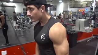 Day in the Life / Arm Workout
