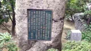 このお寺は秀吉の妻、淀殿のお墓がある歴史好きにはたまらない場所のよ...