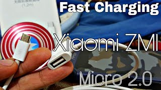 xiaomi-zmi-fast-charging-cable-with-dual-usb