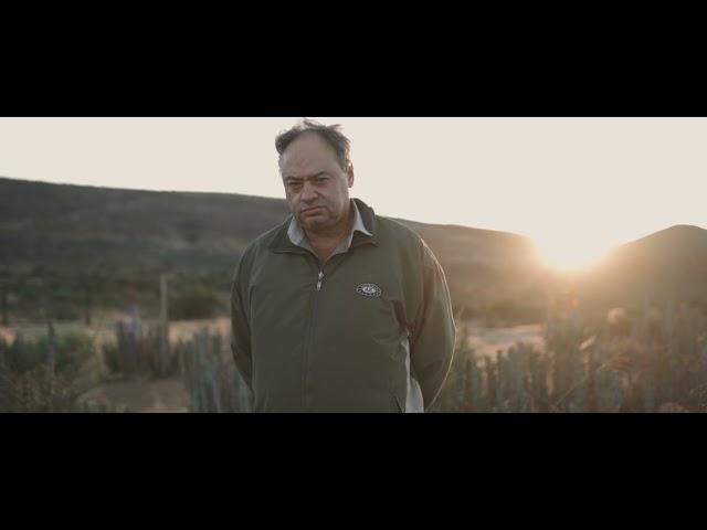 Noorsveld Growers - Gerrit Dos Santos
