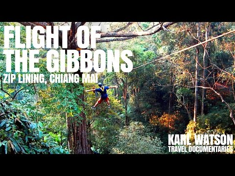 Flight Of The Gibbon Zip-line, Chiang Mai, Thailand