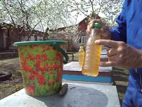 Потолочная кормушка из пластиковой бутылки. Стимуляция. Наращиваем пчелу на акацию.
