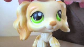 The Top 10 Most Predictable Things in an LPS Series