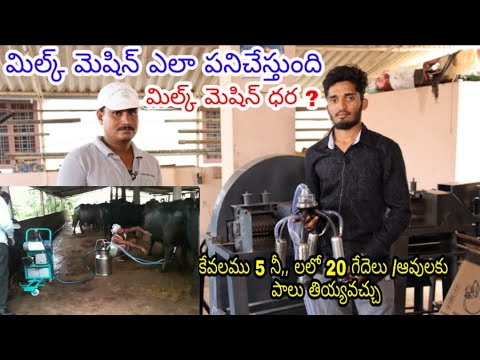 Milking Machine Working And Price In Hyderabad