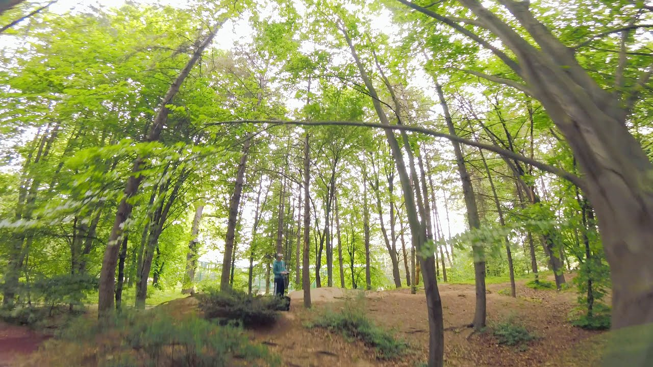 Forest Proximity | FPV Freestyle фото