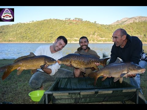 The Old Island Calling- Sardinia Carpfishing Chronicle