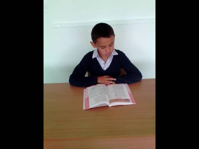 Изображение предпросмотра прочтения – ВладикХурамшин читает произведение «Листопад (Осенняя поэма)» И.А.Бунина