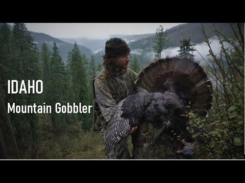 IDAHO MOUNTAIN GOBBLER DOWN!