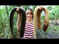 Download Yummy Eel Cooking Hot Spicy Recipe - Cooking Eel - Cooking With Sros in Mp3, Mp4 and 3GP