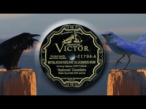National Cavaliers -  My Backbirds Are Bluebirds Now (1928)