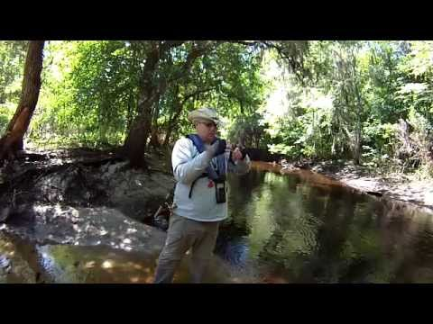 Kayaking And Fishing The Peace River March 2015