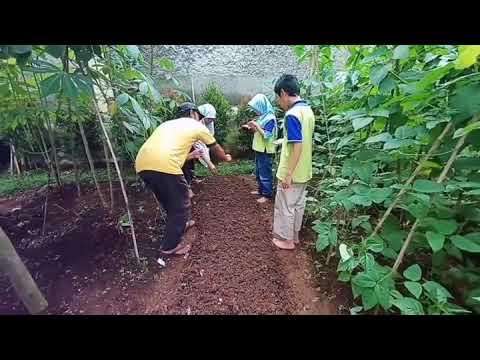 Yuk kita Gardening! :)