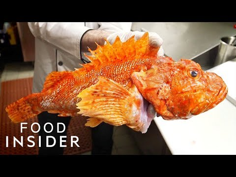 What One Of The Most Venomous Fish Tastes Like