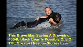 A Brave Man Saving A Drowning 400-lb Black Bear Is Possibly One Of THE Greatest Rescue Stories Ever!