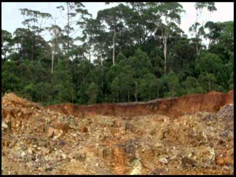 Palawan anti mining ten million signatures.wmv