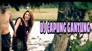 Download lagu DJ CAPUNG GANTUNG DJ GUNGPW MP3
