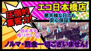 エコ日本橋店のお店動画