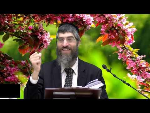 הרב יצחק יוסף(נכד מרן ) -שידור HD - הלכות  ברכות