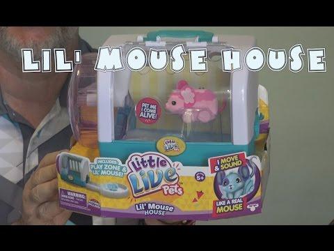 Lil' Mouse House Review- Little Live Pets