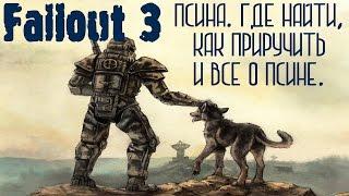Fallout 3. Псина. Где найти псину. Как приручить псину. Все о псине.