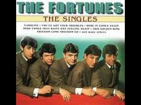 THE FORTUNES - YOU'VE GOT YOUR TROUBLES