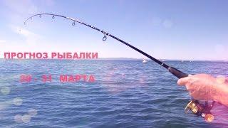 секреты рыбалки прогноз рыбалки 20 - 31 марта.