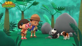 Leo the Wildlife Ranger Minisode #108 - Giant Panda