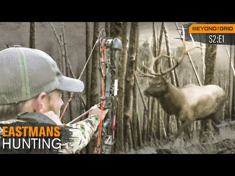 Bow Hunting BIG Wyoming Bull Elk With Grizzly Bears On Your Tail!