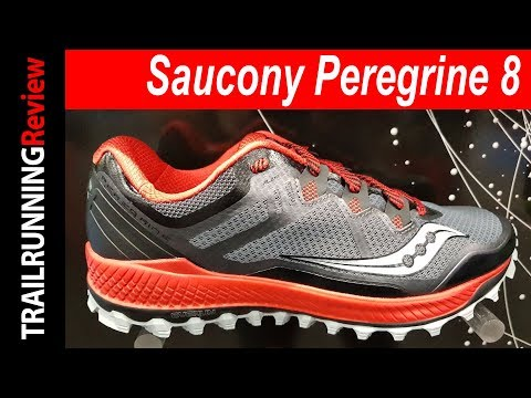 Saucony Peregrine 8 Preview