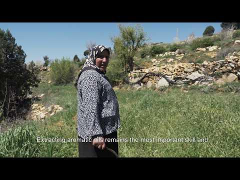 Forward With Lebanon - Khaldie From Akkar