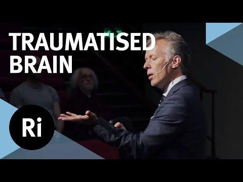 PTSD, Psychological Trauma And Head Injuries