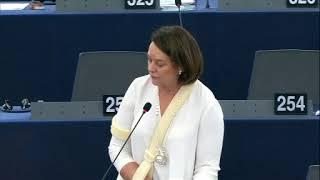 Nathalie Griesbeck 11 Dec 2018 plenary speech on Terrorism