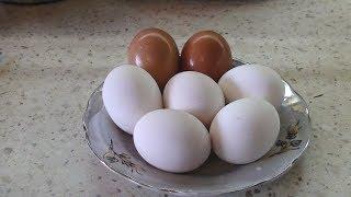 Как отбелить яйца для покраски на Пасху