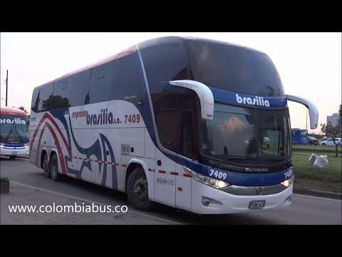 Expreso Brasilia Premium Plus Extra