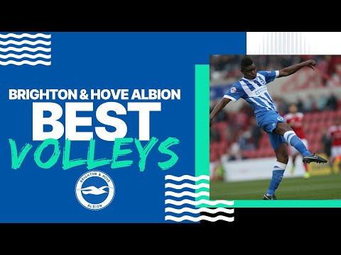 Best Albion Volleys