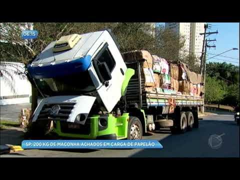Polícia apreende 200 kg de maconha em carga de papelão