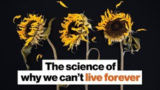 The science of why we die | Michael Shermer