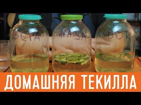 Как сделать домашнюю текилу из самогона. Имитация вкуса текиллы