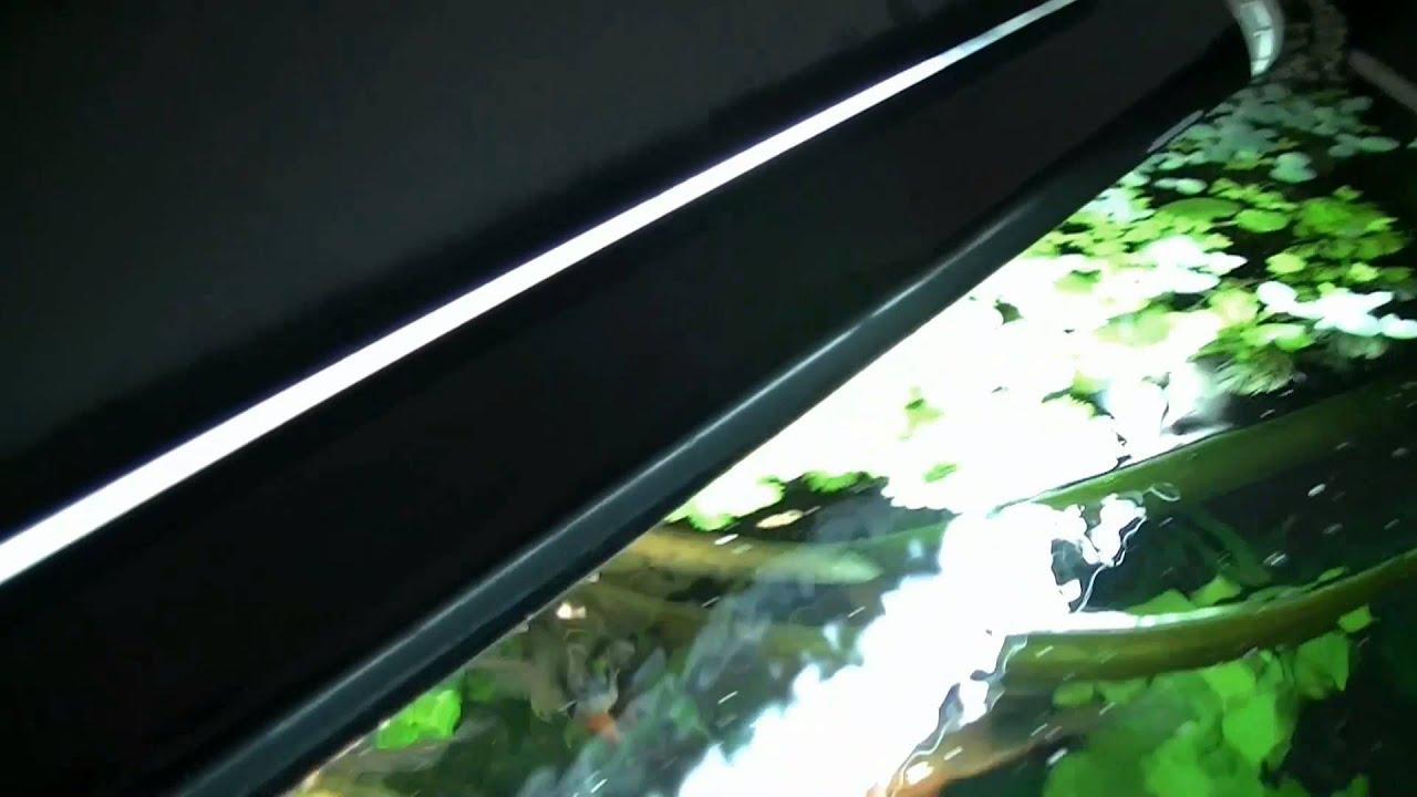 Aquarium reflector voor verlichting - YouTube
