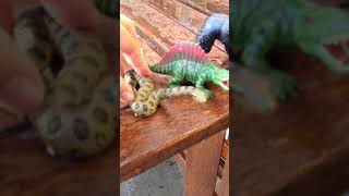 Learn Animal Names: Wild Animals, Farm Animals and Dinosaurs   For Children