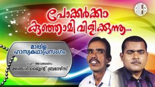 Pokkarkka Kunjami Vilikunnu  മാപ്പിള ഹാസ്യകഥാപ്രസംഗം  Alfa Manjeri Blind Brothers  Comedy Album