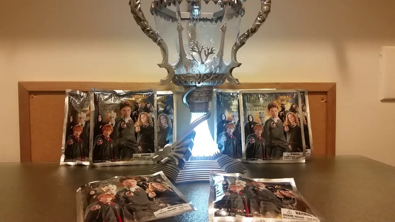 The Hunt For The Triwizard Cup! Part One
