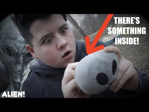 i-found-something-inside-the-alien!-*you-won't-believe-this*