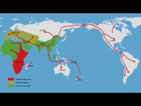Праязык человечества: факт или миф? Рассказывает лингвист Дмитрий Петров