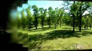 15 Acres Tehama County Land, Redding Land, Real Estate, Property & Redding CA Land For Sale, MLS
