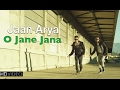 O JANE JANA JAAN ARYA New Hindi POP Songs