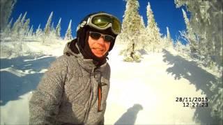 медведи на горных лыжах 1 часть
