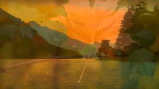 Cánh Chim Vùng Hoang Dại - Từ Công Phụng - Lâm Dung