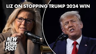 Liz Cheney willing to do 'whatever it takes' to prevent Trump win in 2024 | New York Post
