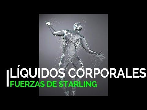 lÍquidos-corporales-|-fuerzas-de-starling